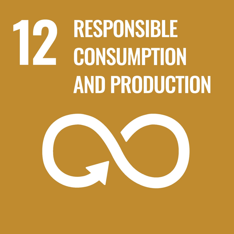 Consumo y producción responsables